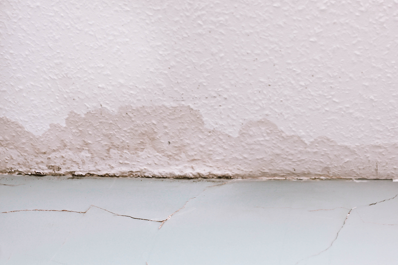Why You Should Keep Moisture Out of Your Home